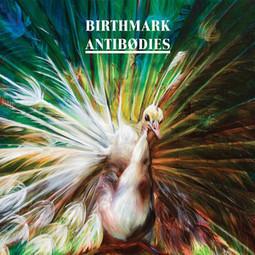 Birthmark - Antibodies | Soundscape | Scoop.it