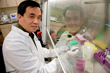 Rapid Sequencing Method Can Identify New Viruses Within Hours | DiscoverMagazine.com | Virology News | Scoop.it