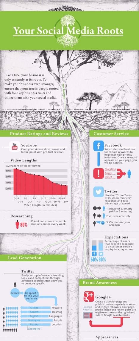 [Marketing] Une entreprise c'est comme un arbre, ses racines doivent être solides ! | Communication - Marketing - Web_Mode Pause | Scoop.it