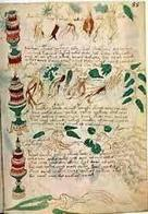 Libros misteriosos de la historia I | La guía de Lengua | Educacion, ecologia y TIC | Scoop.it