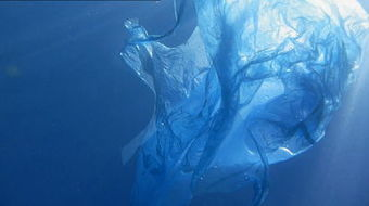 Catalyst: Plastic Oceans - ABC TV Science | Yr 7 Geography | Scoop.it