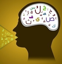 Comment le cerveau assimile une nouvelle langue | Thot Cursus | Enseigner les langues | Scoop.it