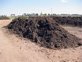 Managing 'Black Gold': Animal Manure and Antibiotic Resistance - Food Safety News | guerrilla composting | Scoop.it