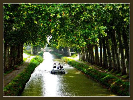 Replantons le canal du Midi | Histoire Canal du Midi | Scoop.it