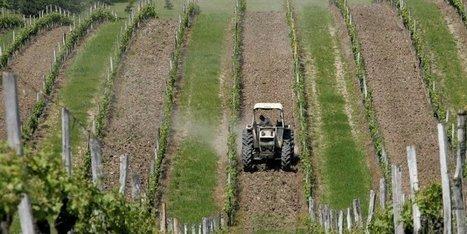 Arrêts maladie permis pour les agriculteurs | Agriculture en Dordogne | Scoop.it