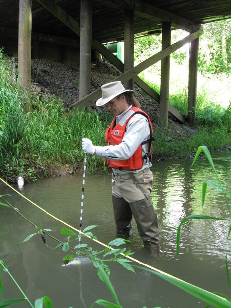 Un cours d'eau sur deux aux États-Unis est contaminé aux néonicotinoïdes, selon une étude scientifique américaine   EntomoNews   Scoop.it