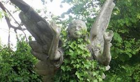 Streatham Cemetery halloween storytelling | Lambeth Council | Lambeth | Scoop.it