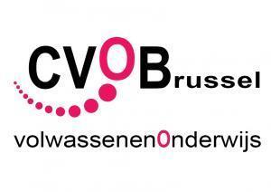 CVO Brussel zet opleiding BDI stop   trends in bibliotheken   Scoop.it