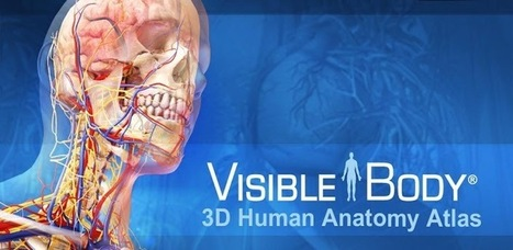 Visible Body 3D Anatomy Atlas - Applications Android sur GooglePlay   Android Apps   Scoop.it