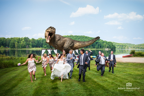 LOOK: Jeff Goldblum joins bride and groom for epic Jurassic Park ... | Photography | Scoop.it