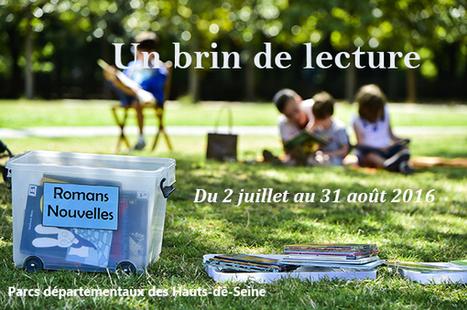 Un brin de lecture | Veille professionnelle des Bibliothèques-Médiathèques de Metz | Scoop.it
