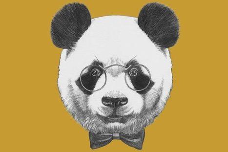 Le filtre Panda désormais intégré à l'algorithme Google | 3.0 GeeK4Pro | Scoop.it