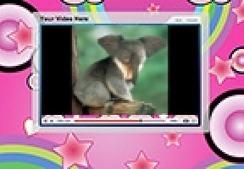 Funny Animals Freaky Animals Mutant Animal Pets | video | Scoop.it
