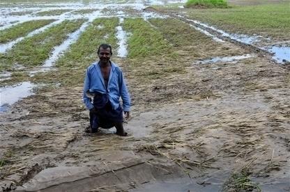 COP21: Sri Lanka's $675 million plan to harness floods   Risques et Catastrophes naturelles dans le monde   Scoop.it