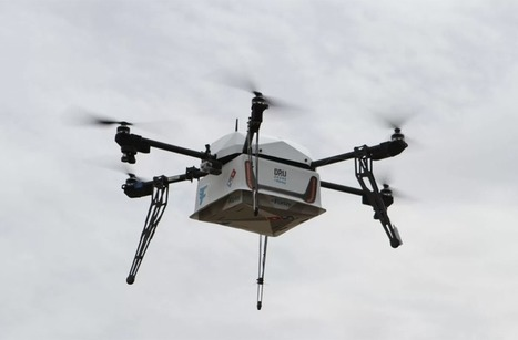Incredible! Domino's Completes First Pizza Delivery by Drone | Society, Culture and Ethics | Scoop.it
