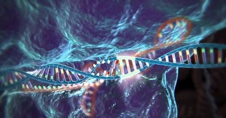 The Age of Gene Editing: Everything You Need To Know About CRISPR/Cas9 | Chair et Métal - L'Humanité augmentée | Scoop.it