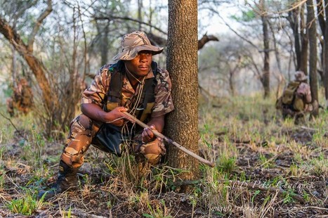 Field Ranger Training and Mentoring are Imperative in the War Against Rhino Poaching | Rhino Poaching & Wildlife Crime | Scoop.it