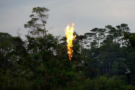 In Ecuador, oil boom creates tension   Sustain Our Earth   Scoop.it