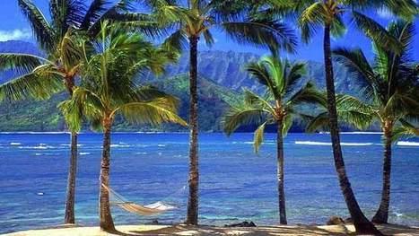 Facts About Hawaii | Aloha Hawaii | Garrett Hawaii | Scoop.it