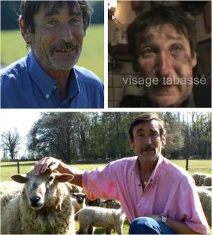 Le meilleur de l'actualité: Philippe Layat, agriculteur résistant, tabassé par 3 porcs | Toute l'actus | Scoop.it