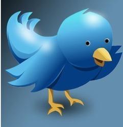 21 Twitter Tips: Twitter For Business Best Practice | Online Books Hub | Scoop.it