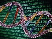 NEXT-GENERATION DIGITAL INFORMATION STORAGE IN DNA | 21st Century Innovative Technologies and Developments as also discoveries, curiosity ( insolite)... | Scoop.it