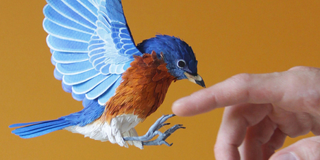 Stunningly Lifelike Birds Made Entirely From Paper   Design   WIRED   Strange days indeed...   Scoop.it
