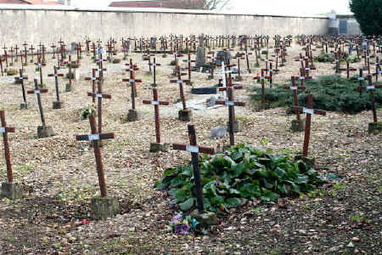 14-18 Cadillac (Gironde) - Le cimetière des fous | Nos Racines | Scoop.it