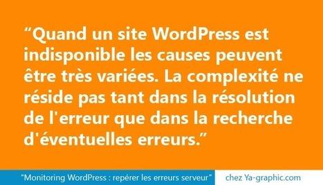 Monitoring WordPress : repérer les erreurs serveur | Entrepreneurs du Web | Scoop.it