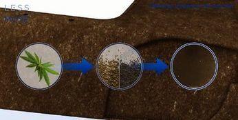 Eolab : un plastique bio-sourcé à base de chanvre signé Faurecia | Mobilis - Cycle de vie produit | Scoop.it