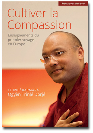 Cultiver la Compassion : le Karmapa | La communication autrement | Scoop.it