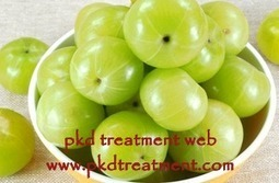 Can Indian Gooseberry Juice Be Good For Kidney Patients - PKD Treatment Web | Healthy | Scoop.it