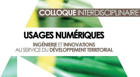 Usages numériques, ingénierie et innovations au service du développement territorial - colloque   Usages des  TIC et du Web 2.0   Scoop.it