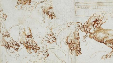 Leonardo da Vinci drawings to go on display in Dublin | News in Conservation | Scoop.it