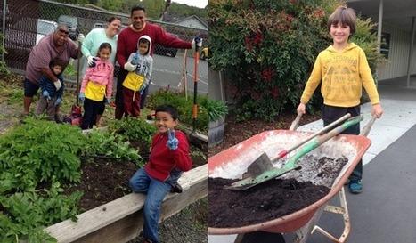 Whole Kids Foundation | Spring Creek | Scoop.it