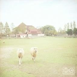 Gurun Gurun – Home NormalMix | Ambient Music | Scoop.it
