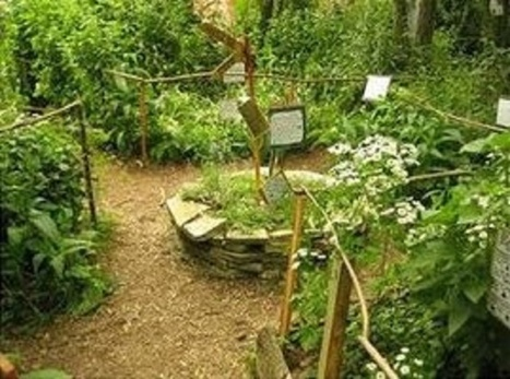 La Permaculture ou le respect de la nature (Part 1) | Agroécologie et permaculture | Scoop.it