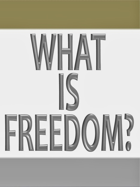 What is Freedom? | Politics for the Twenty-first Century | Scoop.it