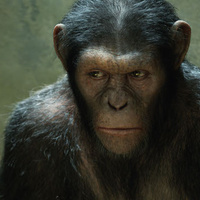 Scientists make monkeys smarter using brain implants. Could you be next? | InfoCluster | Scoop.it