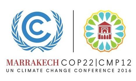La Cumbre de Marruecos desoye la urgencia del cambio climático | Ecologistas en Acción | Climax | Scoop.it
