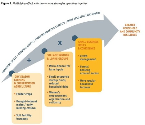 ALP: Adaptation Strategies Compendium | weADAPT | Coral reef ecosystems resilience | Scoop.it