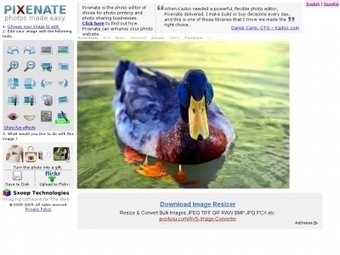 Modifier des Photos avec notre Sélection d'Outils en Ligne Gratuits. | photoshop ressources | Scoop.it