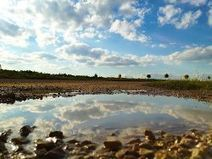 Symposium on Climate Change Adaptation in Africa 2016 | Climate Smart Agriculture | Scoop.it