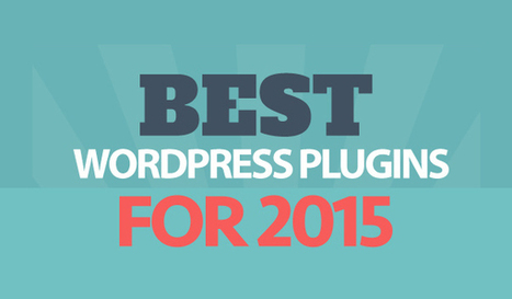 The Best WordPress Plugins for Bloggers: 30 Pros Reveal Their Favourite | Web design- promoting your Website | Scoop.it