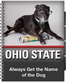 Always Get the Name of the Dog | Web 2.0 for Education | Scoop.it