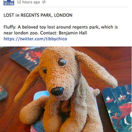 """""""Teddy Bear Lost And Found"""" is possibly the sweetest public service on the internet 