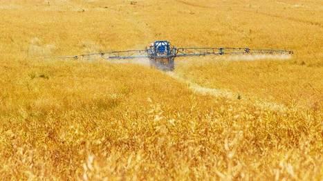 Le ministre doit réagir face aux résistances des conservatismes et des égoïsmes | Pour une agriculture et une alimentation respectueuses des hommes et de l'environnement | Scoop.it