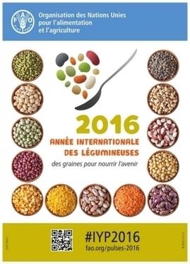 INRA - 2016 année internationale des légumineuses | qqs infos sur le centre Inra Montpellier | Scoop.it