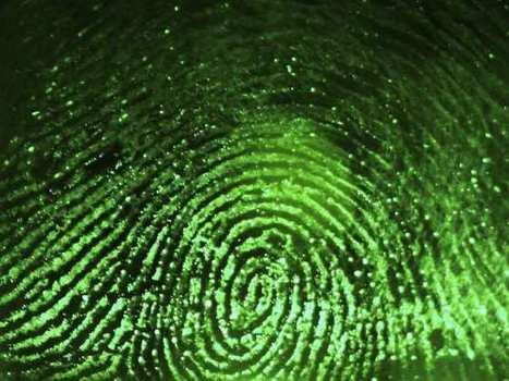 Public servants face credit checks, fingerprinting in new security screening regime | Canadian Criminal Background Checks | Scoop.it