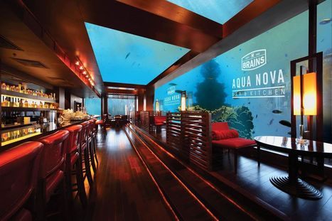 Wet your whistle at UK's first underwater pub in Cardiff Bay - WalesOnline | SCUBA | Scoop.it